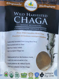 Wild Harvested Organic Chaga Chunks