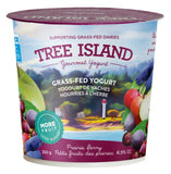 Tree Island Grass Fed Fruit Yoghurt - 350g 6.5 M.F.