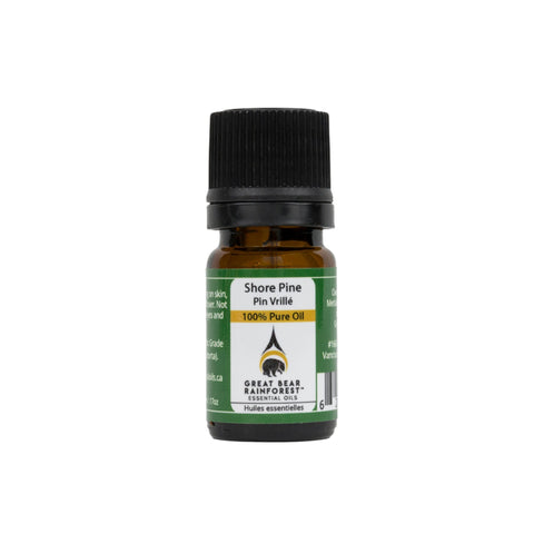 Great Bear Rainforest Essential Oils - Shore Pine Essential Oil