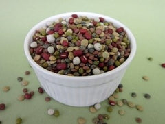 Certified Organic, non-GMO Sprouting Seeds - Holly's Bean Mix 1 pound