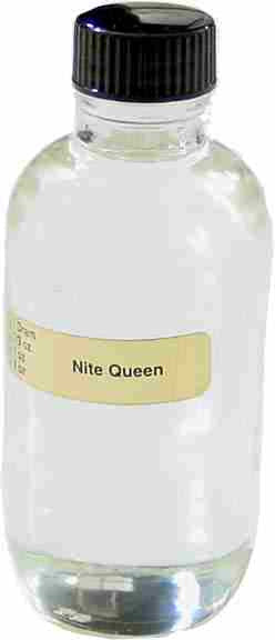 Nite Queen (W) - 1/3 oz.