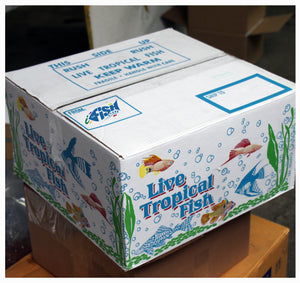 How We Pack/Ship Freshwater Aquarium Fish