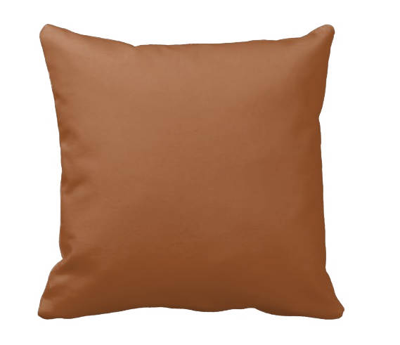 Cleveland USA Pillow - Shirley's Loft - 2