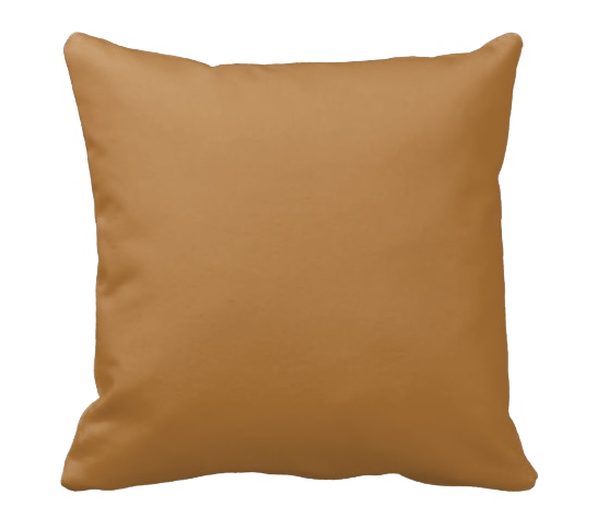 The Land Pillow - Shirley's Loft - 2