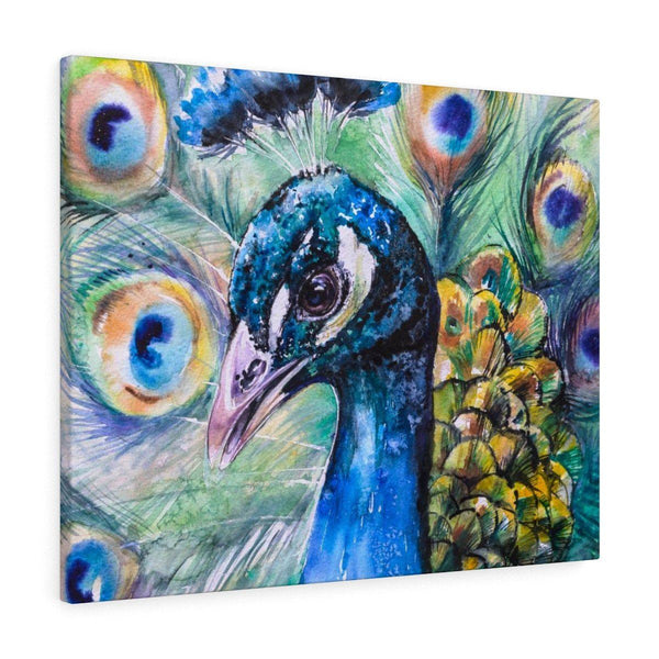 Peacock Paradise Stretched Canvas Print