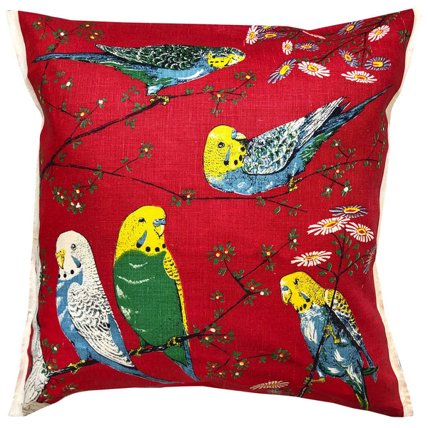 Budgie beauty on red linen tea