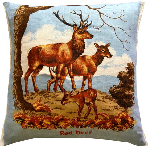 Red Deer on soft blue
