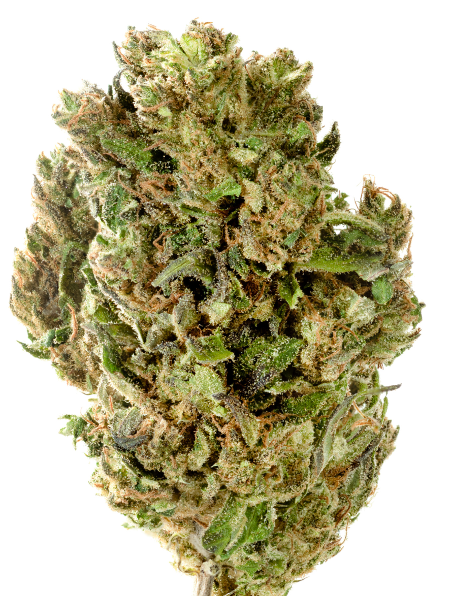 Hawaiian Haze 15.22% Hemp Flower