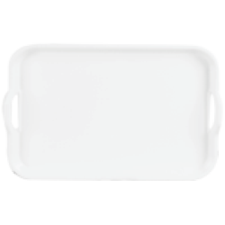 DINEWELL 1015 TRAY