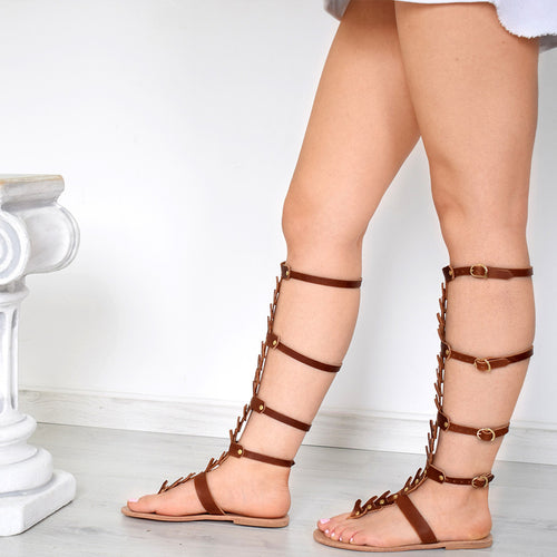 brown leather gladiators for women