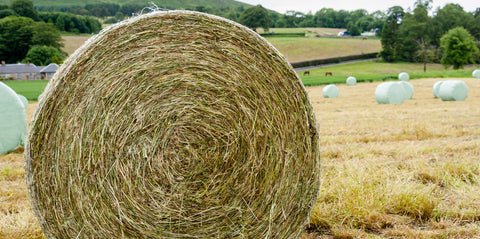 Gleadell Hay & Haylage