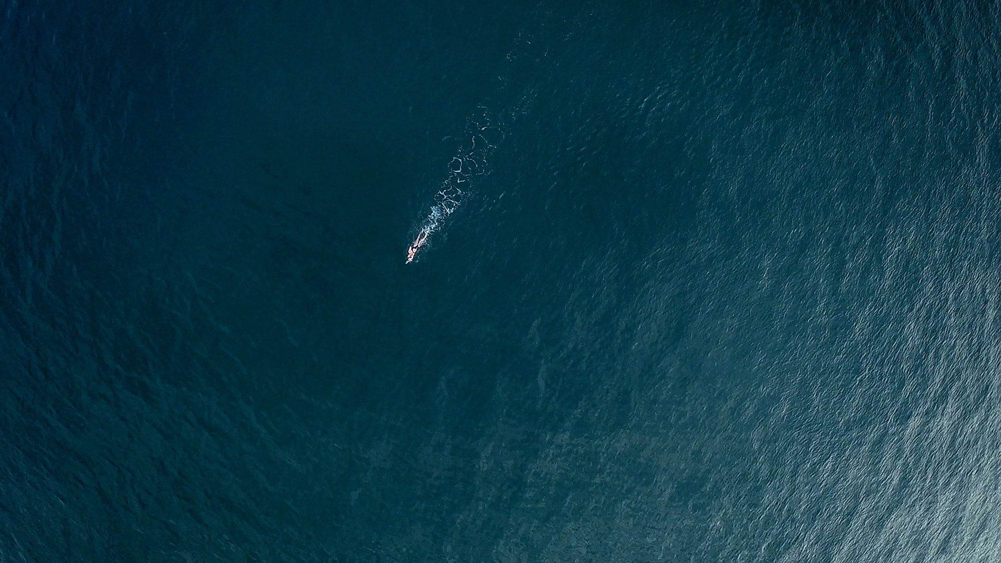 Arial view of Beth French swimming in open water as part of the Oceans 7 challenge