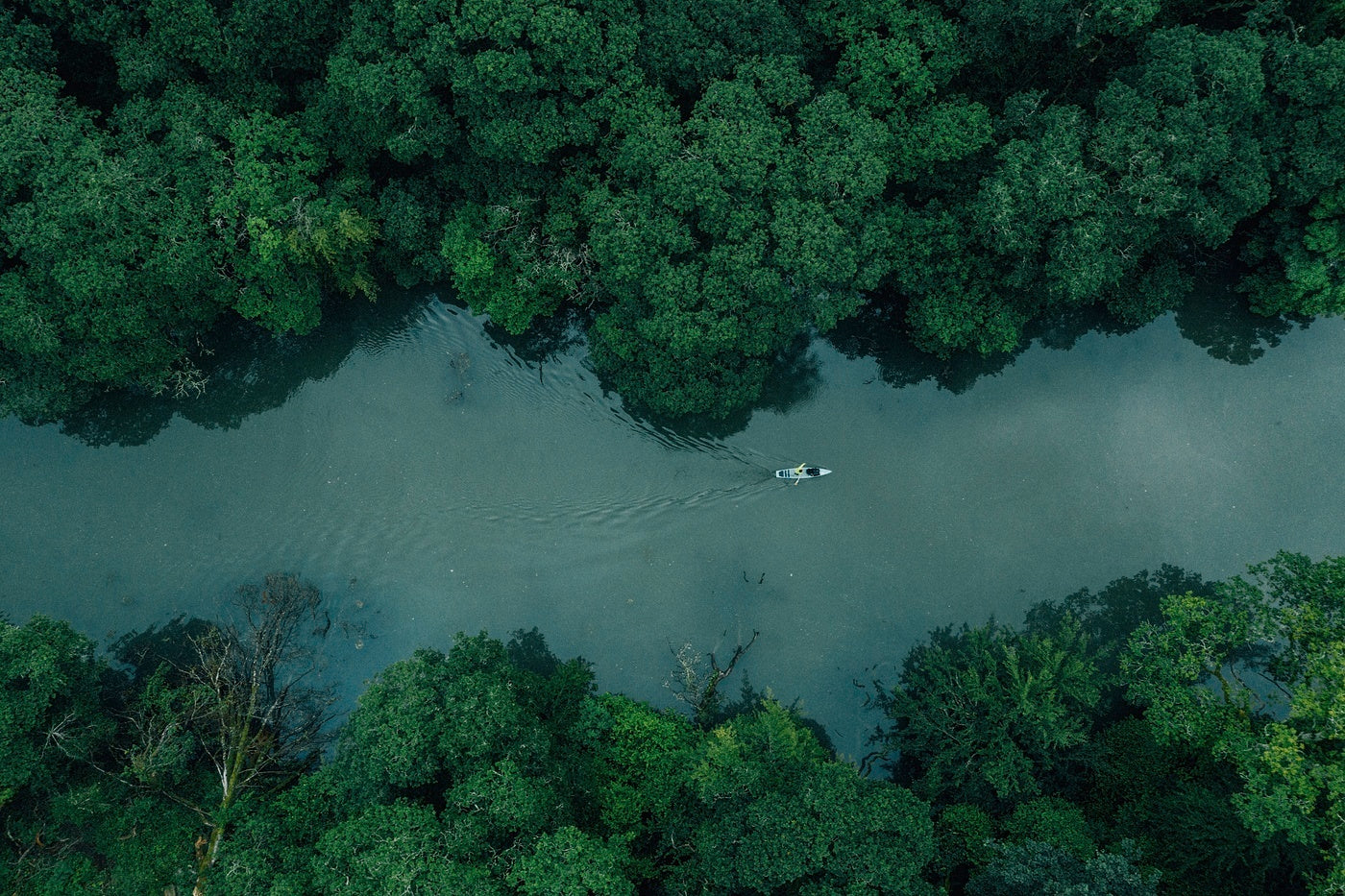 Arial view of Sean White paddleboarding up the river for a solo adventure
