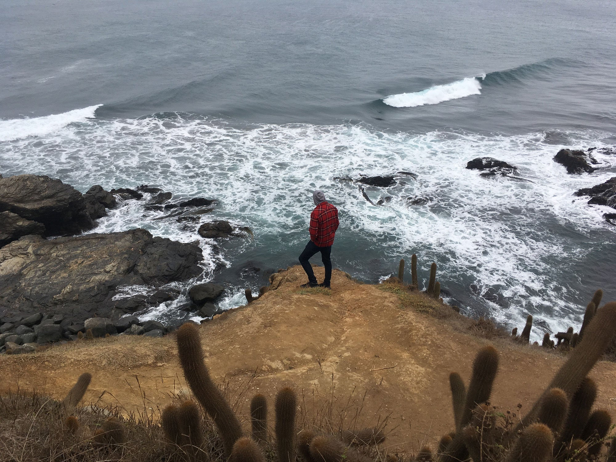 Dan-crockett-looks-out-at-punta-de-lobos