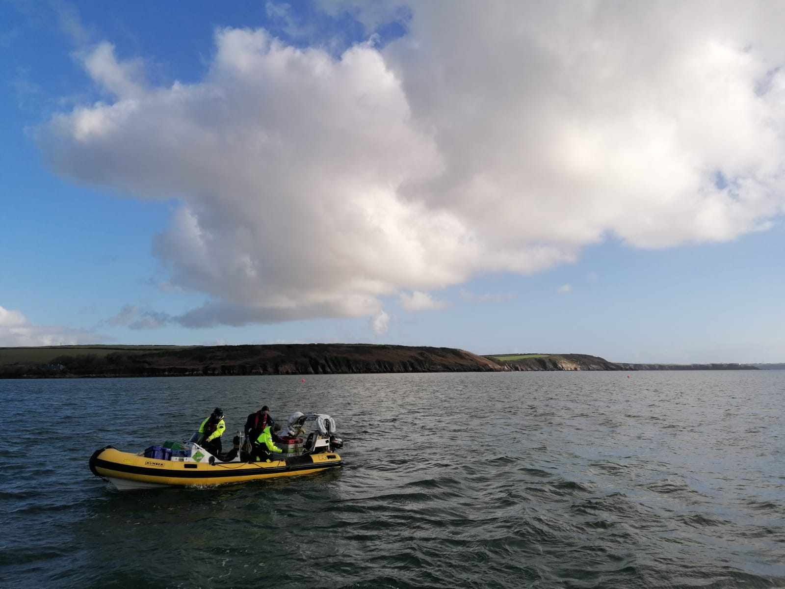 Dale, Pembrokeshire: Nobody was around to see it, but this is the moment the 1,000,000th seed entered the water for our Seagrass Ocean Rescue project in Dale.