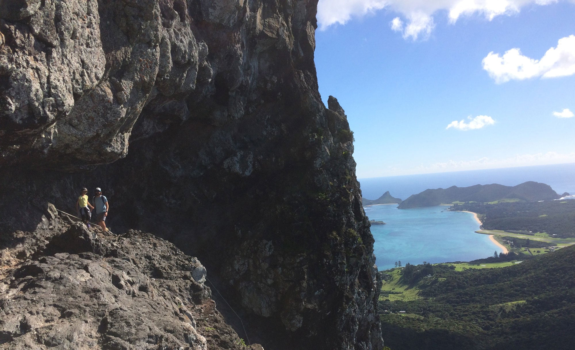 Artist Ben Waters climbing high on Lord Howe Island
