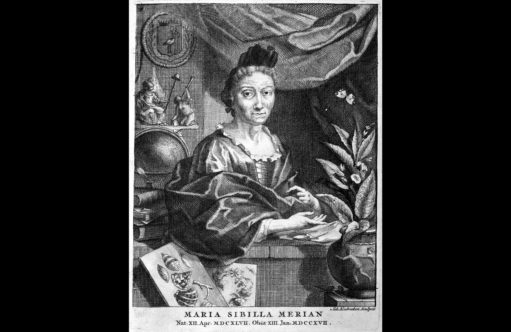 Maria Sibylla Merian Portrait from later in life