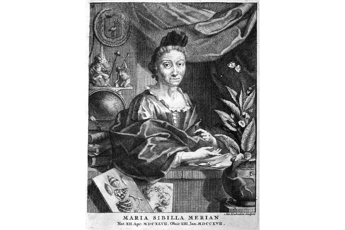 A portrait of Maria Sibylla Merian in later life