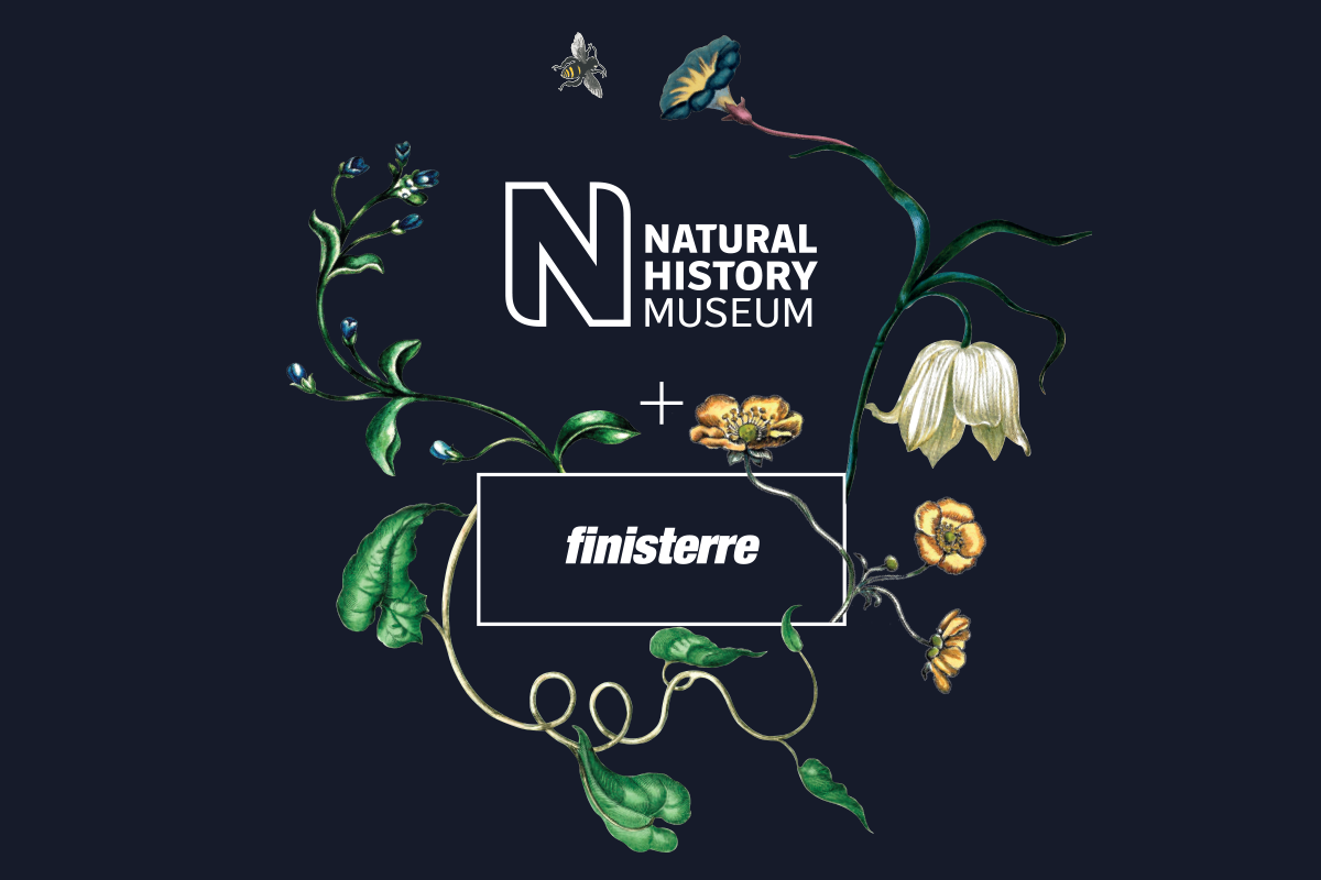 Natural History Museum + Finisterre - bespoke collaboration logo with work from Maria Sibylla Merian