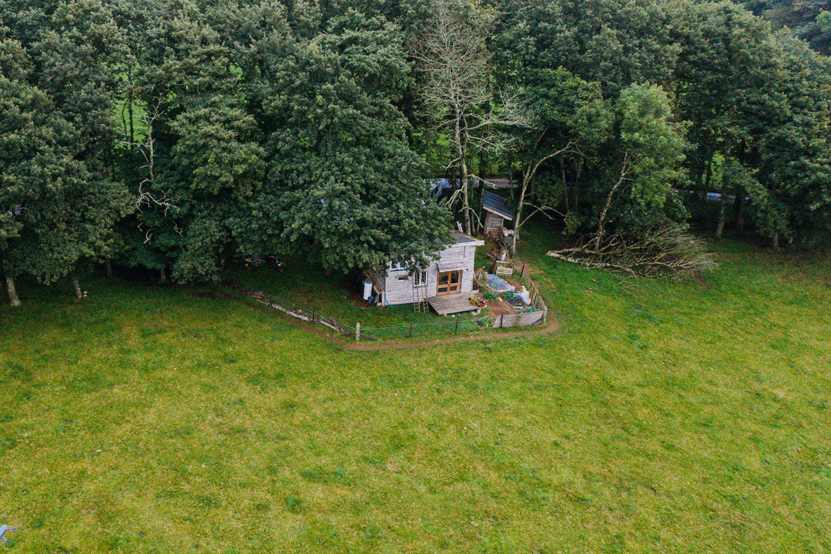 The Hand Built Home - Arial shot of the cabin in the woods