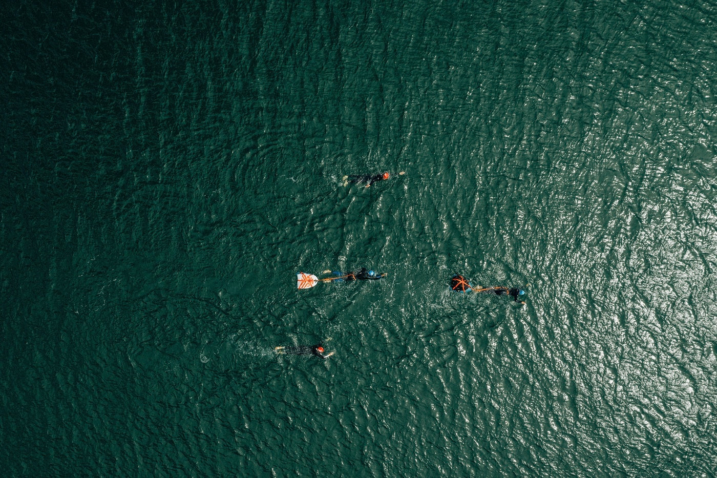 A group of sea swimmers captured by a drone above