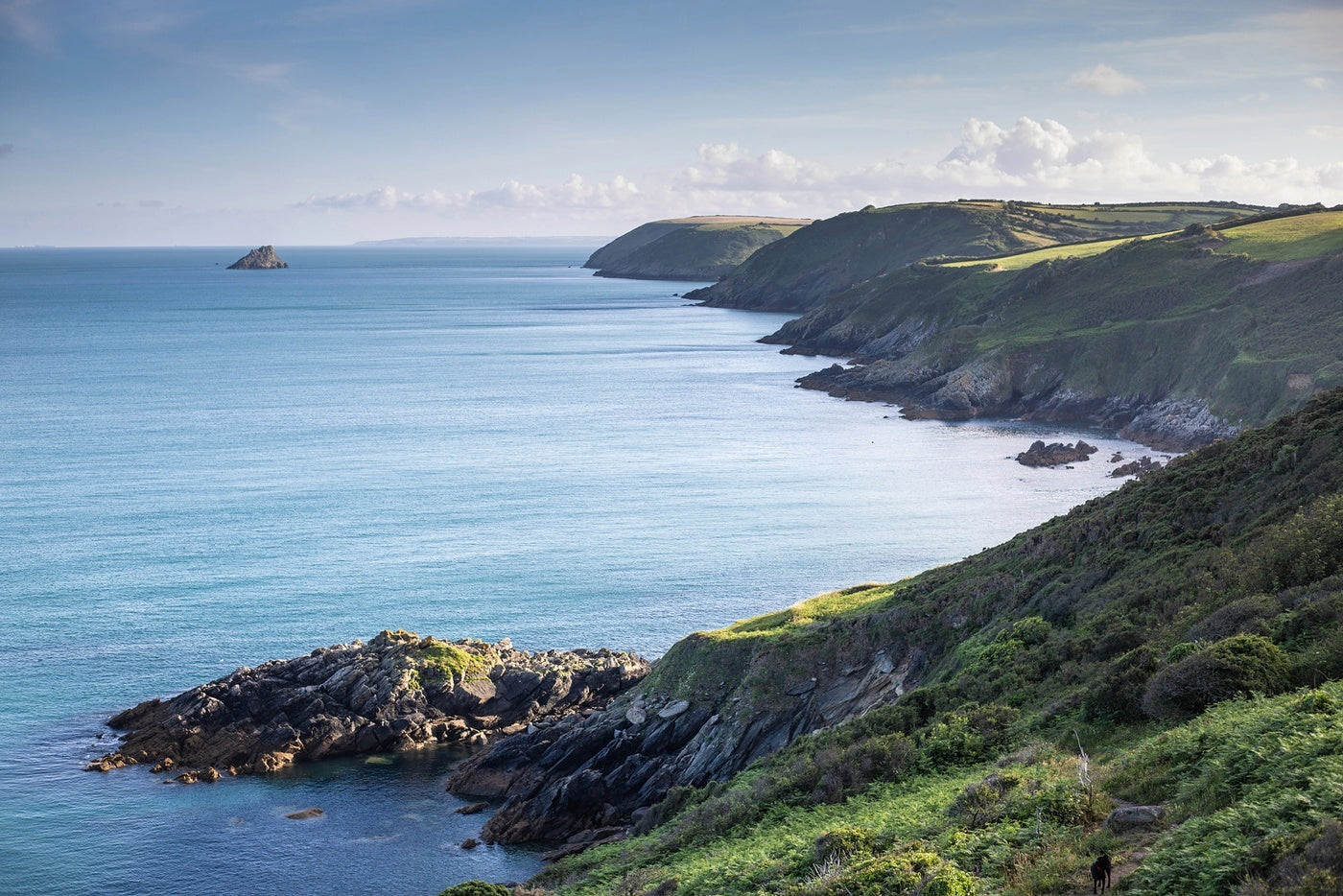 Blues & Greens - the colours of nature along the south west coast path