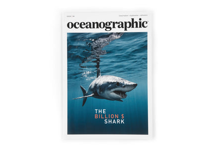 Oceanographic, Issue 8