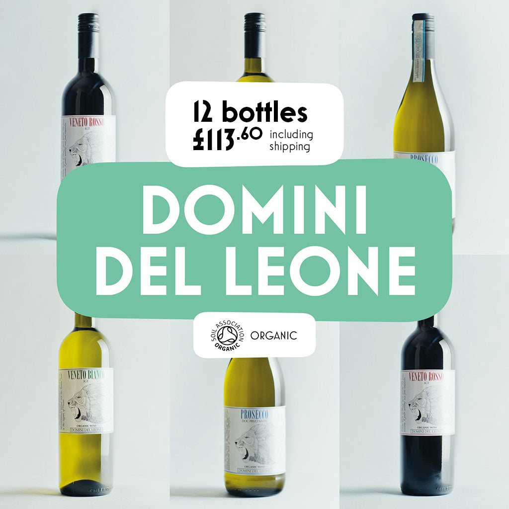 Domini del Leone 12 Bottle Mixed Case