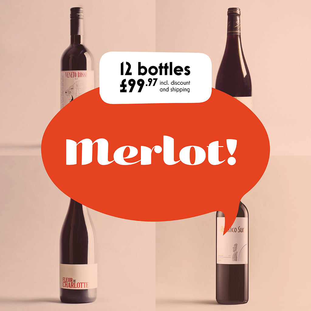 Case by Case: Merlot! 12 bottle selection