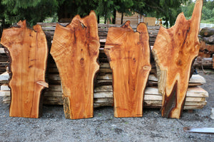Groovy Natural Live Edge Wood Slabs Mantles Tables Benches Gmtry Best Dining Table And Chair Ideas Images Gmtryco