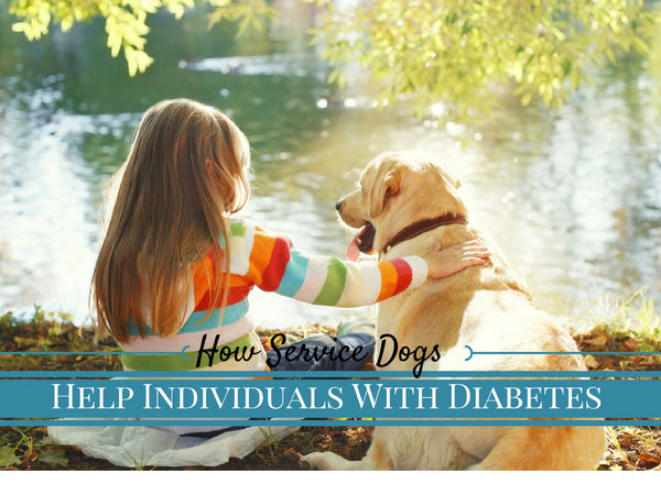 Service dogs for diabetes