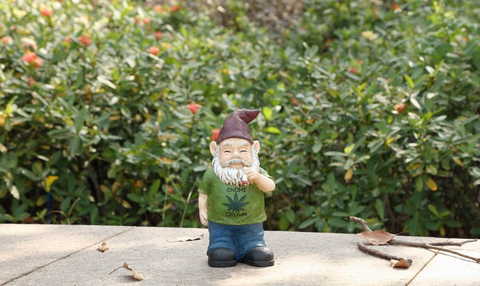 Gnome Smoking Weed