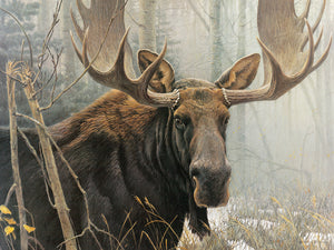 OUTSET - BULL MOOSE PUZZLE
