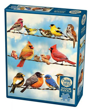 COBBLE HILL - BIRDS ON A WIRE PUZZLE