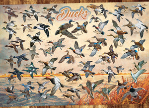 OUTSET - DUCKS OF NORTH AMERICA PUZZLE