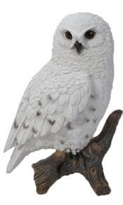 HILINE SMALL OWL SNOWY ON STUMP