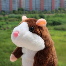 Load image into Gallery viewer, Talking Hamster - Half Price Sale