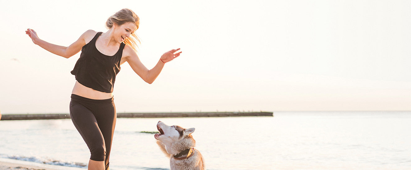 Toronto's Best Beaches for Dogs