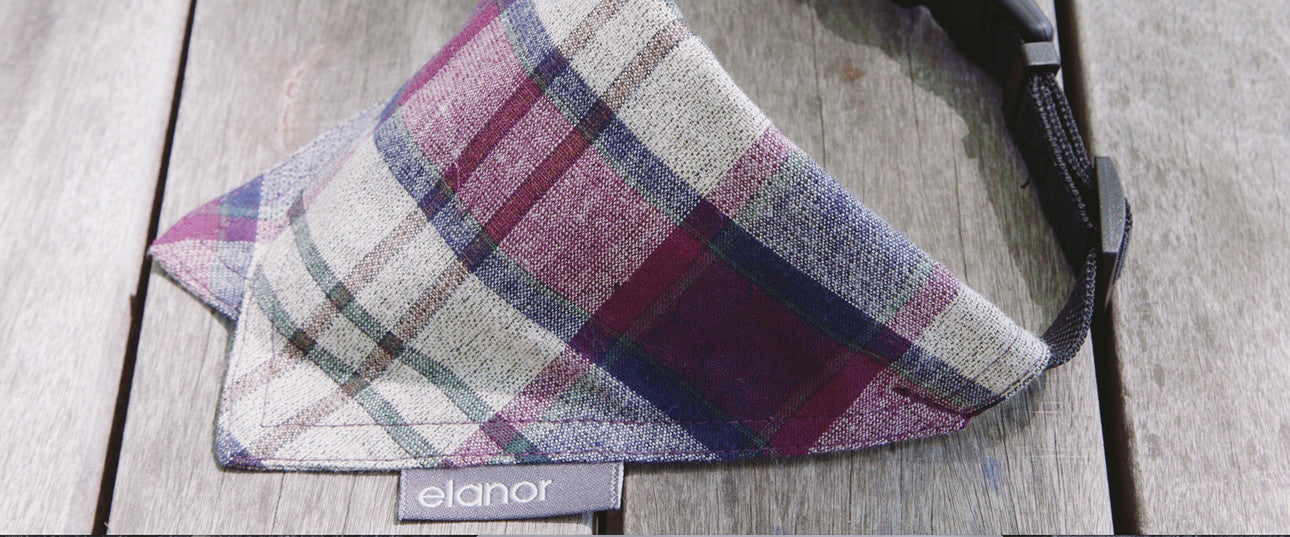 Pinky's Pick (Barker Issue 002): Elanor