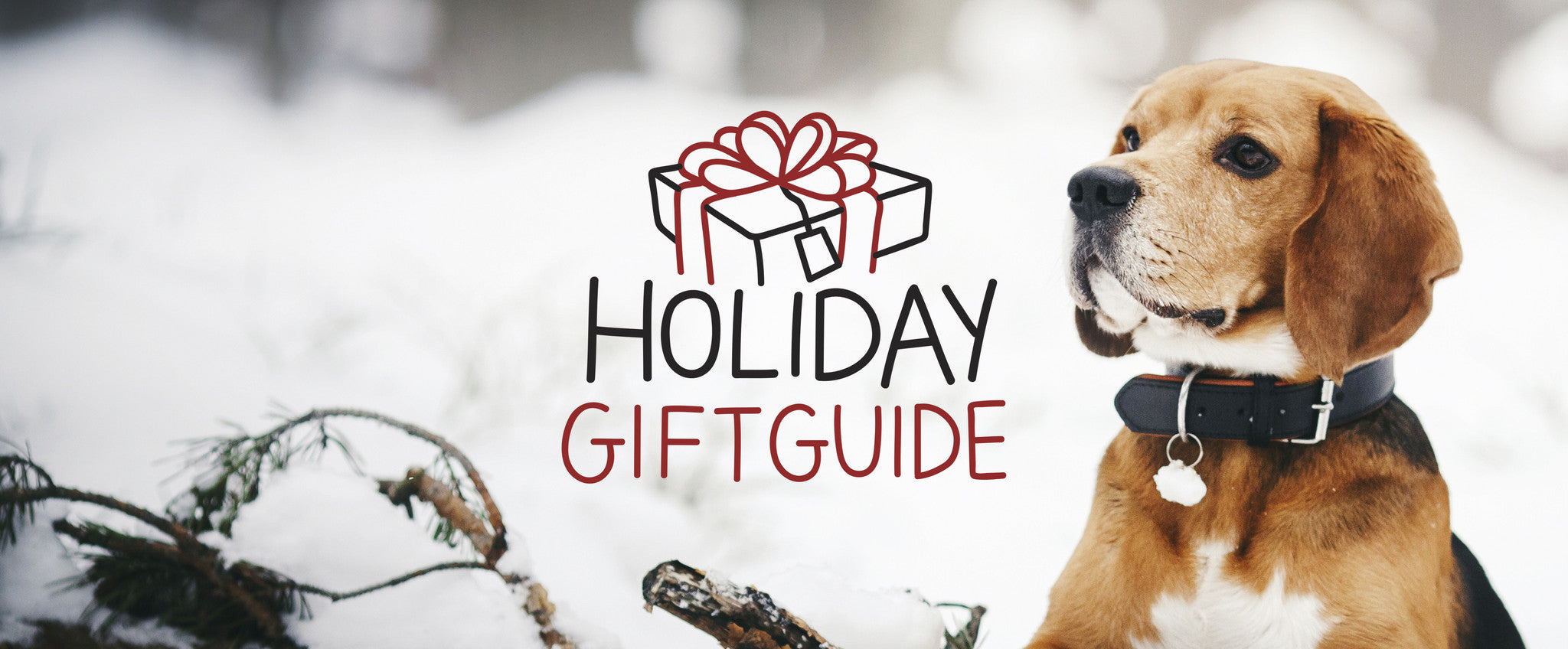 Holiday Gift Guide 2016