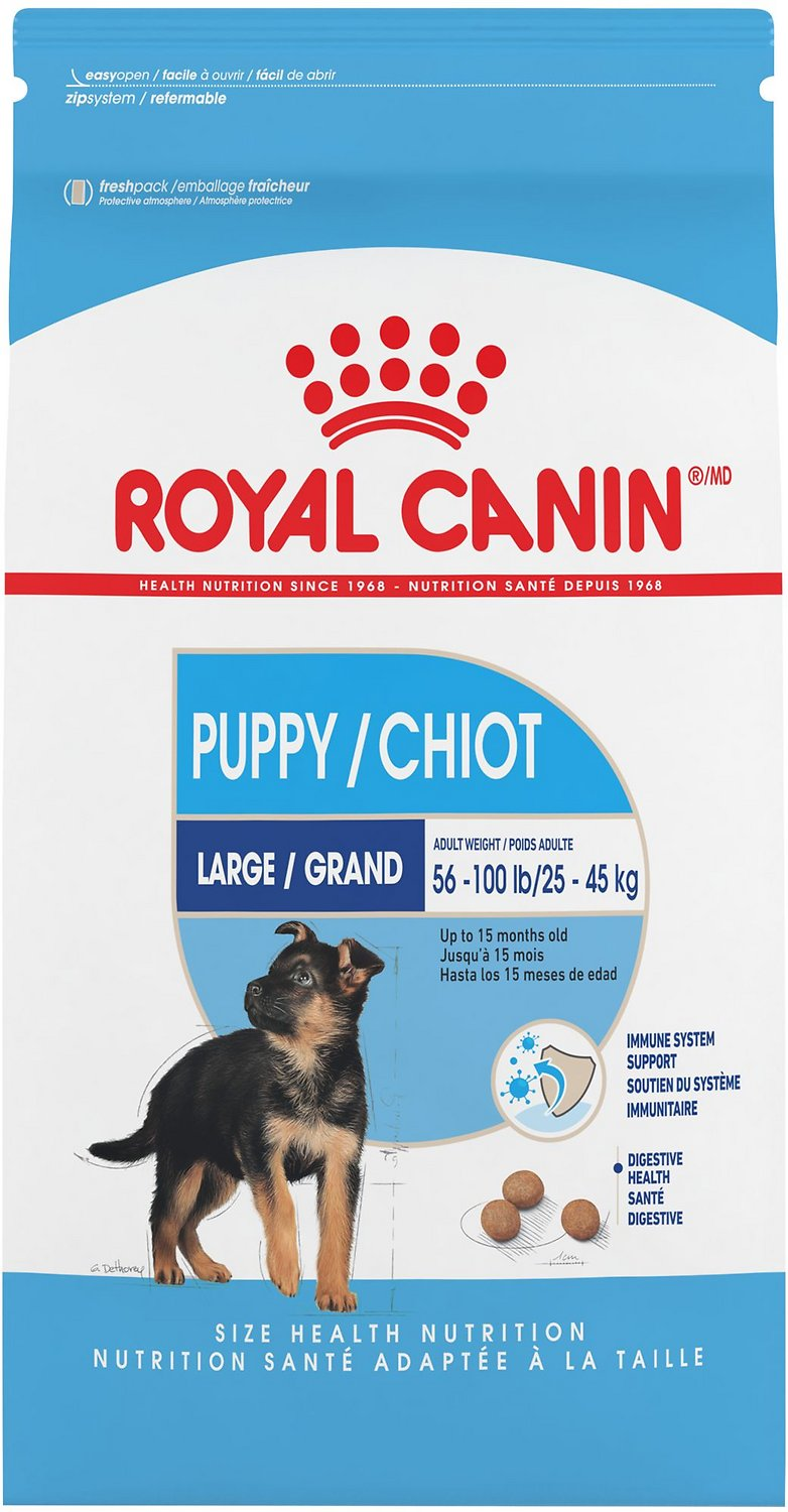 Royal Canin Maxi/Large Puppy Dog Food