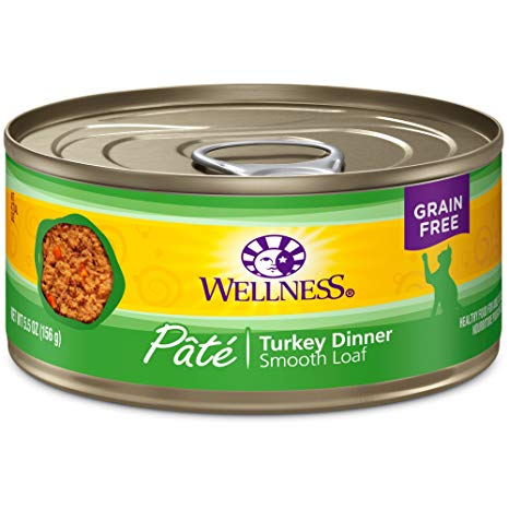Wellness GF Turkey Canned Cat Food