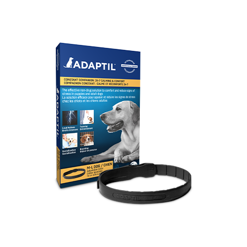 "Adaptil Calm ""On the Go"" Dog Collar"