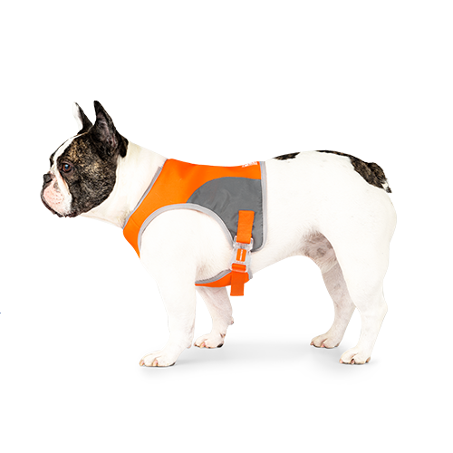 Canada Pooch High Visibility Safety Vest - Orange