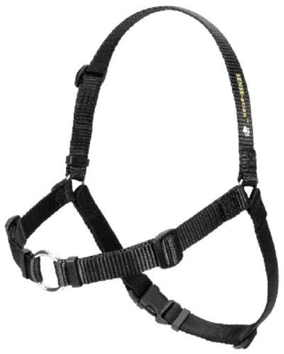 SENSE-ation Dog Harness - Various Colours