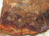carey plume agate rough
