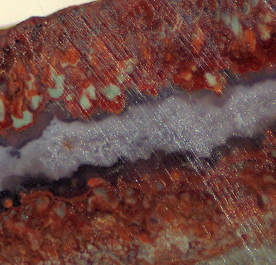 Prudent Plume Seam Agate 10.6 oz lapidary thick slab - nice plumes