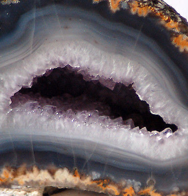 Las Choyas Coconut Geode Split pair Amethyst and BlueGrey Chalcedony 1.5 lbs
