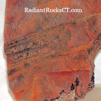 Indo Flame, Indonesian Sagenite Agate 1.8 oz  lapidary slab - radiantrocksct