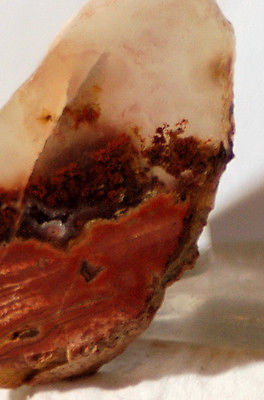 Carey Plume Agate 0.6 oz Lapidary  cab slab good plume (18 grams) - radiantrocksct